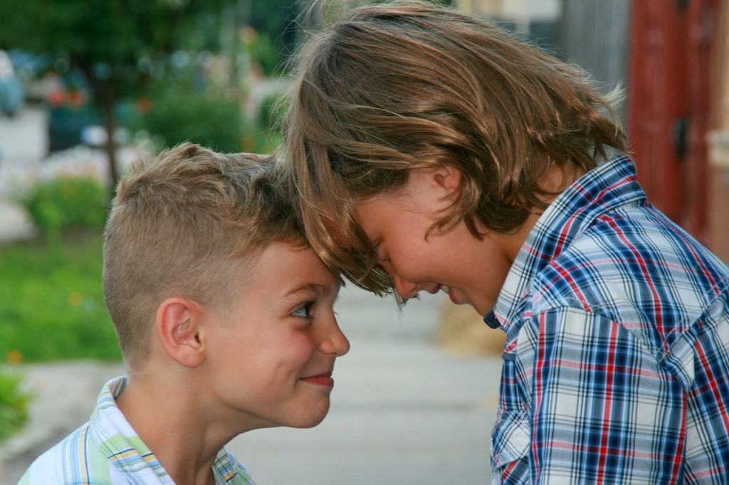 brothers-835141_1280